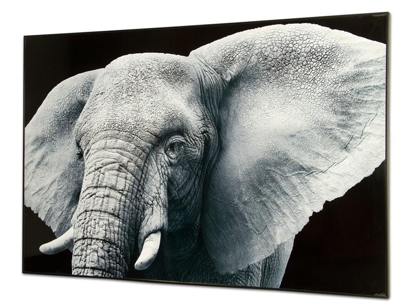 Cuadro de elefante venta online de cuadros decorativos for Cuadros de metacrilato