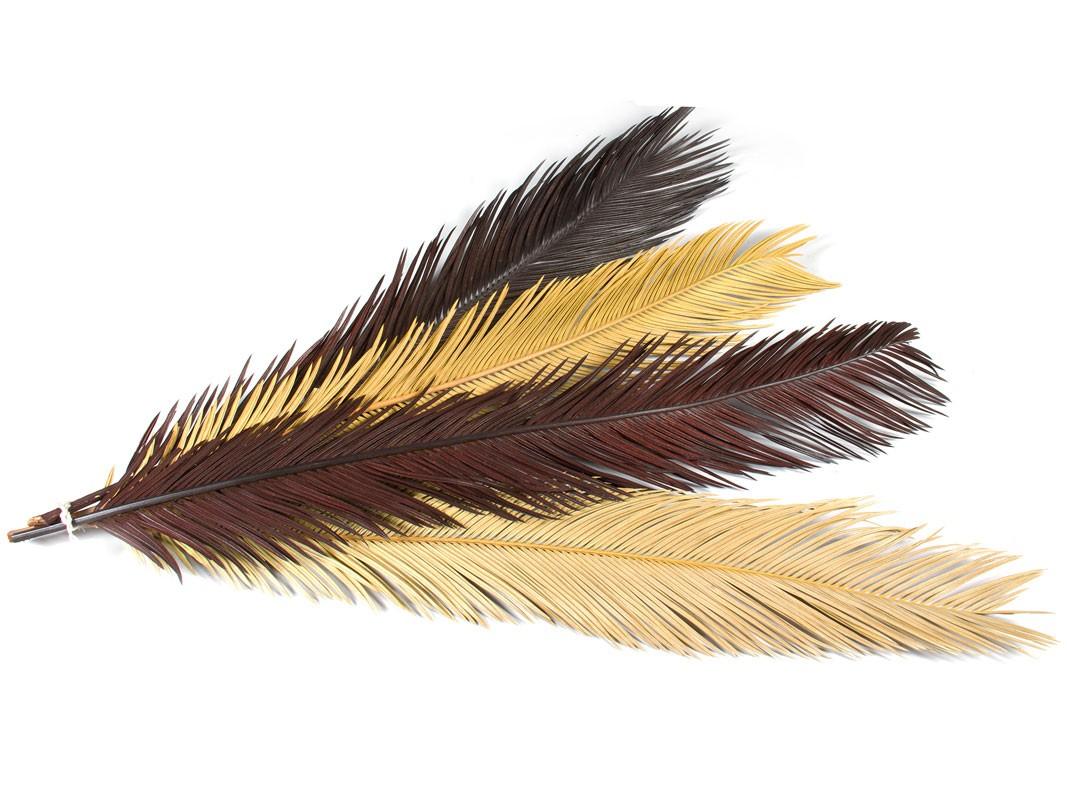 Plumas decorativas juego de 4 plumas para decorar for Plumas para decorar