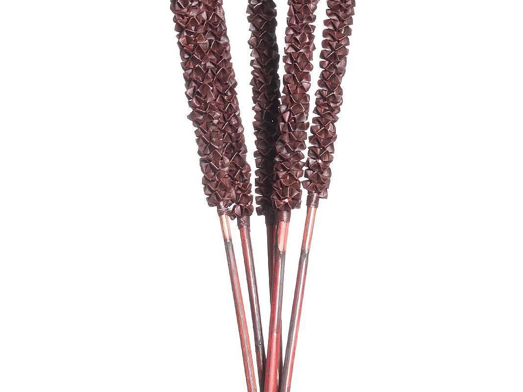 Tallos de flores secas ramo de 5 tallos de 95 cm - Flores secas decoracion ...
